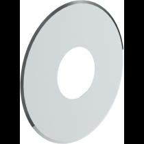 Rosetta 10 cm